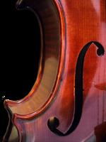 F-Loch Violine